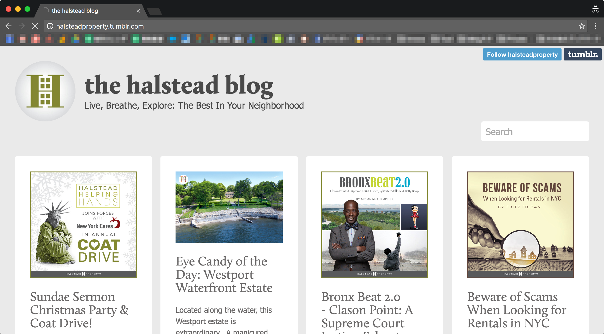 Halstead Property社「the halstead blog」のサイトトップの画像